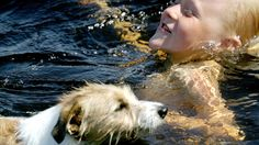 Tutkimus vahvistaa kansanviisauden. Koira todella on ihmisen paras ystävä.