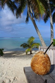 Rarotonga- cant wait till next winter! Places To Travel, Places To Visit, Fantasy Island, Coconut Grove, Tropical Paradise, Island Life, Beach Bum, Palm Trees, Summertime