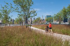 15 HPS-LIC.NY-tba-(172)-Wade-Zimmerman « Landscape Architecture Works | Landezine
