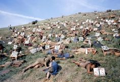 This behind the scene photo of extras is captured in the set of the movie Spartacus. Spartacus is a 1960 American epic historical drama film directed by Stanley Kubrick and starring Kirk Douglas as. Michael Keaton, Stanley Kubrick, Scene Photo, Movie Photo, Iconic Movies, Old Movies, Indiana Jones, Tom Cruise, Pulp Fiction