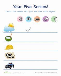 Preschool The 5 Senses Worksheets: Using the Five Senses