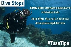Tip Tuesday: Dive Stops! Safety Stops & Deep Stops!