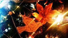 Days of Whine and Rosé: Life In An Autism Household : The Night The Spirit of #Christmas Filled Our #Autism Home