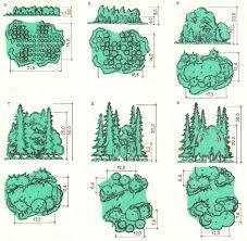 Картинки по запросу Создание групп деревьев и кустарников.