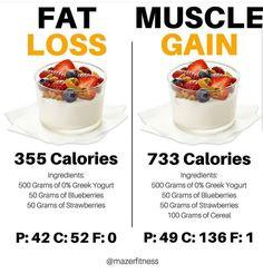 Fat Loss Vs Muscle Gain