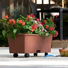 EarthBox Gardening System w/ Double Planting Kit