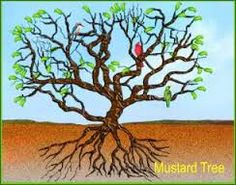 Image result for mustard tree images