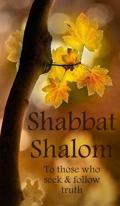 50 Beautiful Shabbat Shalom Greeting Pictures And Photos Sabbath Rest, Happy Sabbath, Sabbath Day, Cultura Judaica, Arte Judaica, Shabbat Shalom Images, Israel, Sabbath Quotes, Messianic Judaism