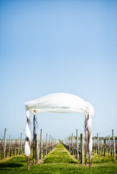 Wedding Chuppah at Martha Clara Vineyards @Martha Clara Vineyards  @W Studios New York