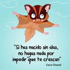 """Si has nacido sin alas, no hagas nada por impedir que te crezcan"" #CocoChanel #Citas #Frases @Candidman"