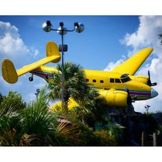 Mayday mayday! #plane #usa #l4l #golf #potpot
