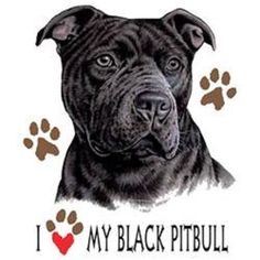Black Pitbull Dog HEAT PRESS TRANSFER for T Shirt Tote Sweatshirt Fabric #891a #AB