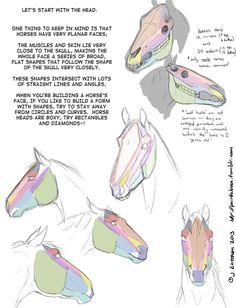 Drawing steps/tips Subject:horses structure part 2