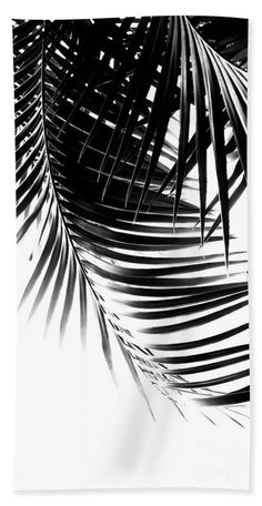 Palm Leaves Black White Vibes 1 tropical decor art Beach Towel for Sale by Anitas and Bellas Art Black And White Wallpaper, Black And White Pictures, Canvas Art Prints, Framed Art Prints, Leaves Wallpaper Iphone, White Leaf, Black And White Leaves, Black White, Aesthetic Photography Nature