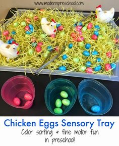 Fine motor and color sorting sensory tray with chicken eggs for toddlers and preschoolers from Modern Preschool, great preschool spring and easter activity