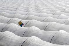 White greenhouse. Agricultural worker. # © Leyla Emektar, Turkey, Winners of the 2017 Sony World Photography Awards - The Atlantic