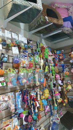 Brinquedos diversos para cães e gatos