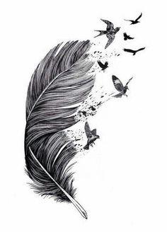 Image about beautiful in Illustrations by Bella nell - Bild von Bella nell entdeckt.) deine eigenen Bilder und Videos auf We Hear - Feather With Birds Tattoo, Feather Tattoo Design, Feather Art, Feather Drawing, Feather Sketch, Indian Feather Tattoos, Bird Sketch, Mandala Drawing, Pencil Art Drawings