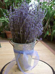 "Premium French Lavender Bundles 11-13 "" tall 90 stems $9"
