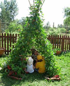 grow pole beans into a teepee.I love this teepee:) My grandkids would love this. Diy Tipi, Long Bean, Plantation, Outdoor Play, Outdoor Learning, Indoor Outdoor, Dream Garden, Garden Fun, Edible Garden