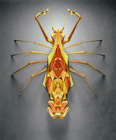 http://theinspirationgrid.com/generative-polygonal-insects-by-istvan/