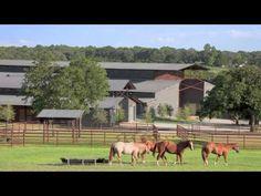 Cutting Horse Ranch, Texas
