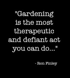 garden quotes Growing little green onions and other acts of kindness Garden Works, Therapy Quotes, Black Garden, Garden Journal, Garden Quotes, Garden Signs, Flower Quotes, Garden Inspiration, True Quotes