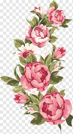 Flower Border Png, Floral Border, Flower Borders, Floral Watercolor Background, Watercolor Border, Watercolor Rose, Rose Illustration, Floral Illustrations, Coffee Flower