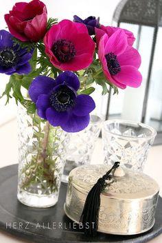 pinks and purples (apositivelybeautifulblog)