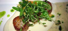 Capesante su vellutata di patate   Ricette Stagionali e Occasioni Speciali
