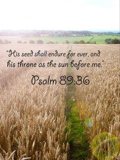 Psalm 89:36