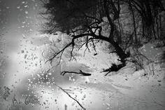 through the window photos, winter - Google Search