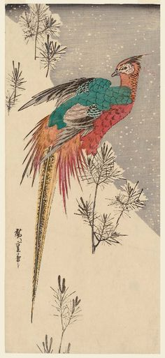 Golden Pheasant and Pine Shoots in Snow  Japanese about 1833 (Tenpô 4) Artist Utagawa Hiroshige I (Japanese, 1797–1858)