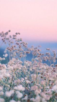 La passione per piante e fiori? Fa bene alla salute!