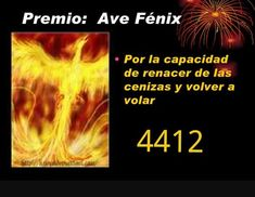 Ángeles Amor: MEDICINA DEL AVE FENIX Por Agesta Karma, Starting From The Bottom, Angel Numbers, Money Affirmations, Wicca, Reiki, Chakra, Insight, Positano