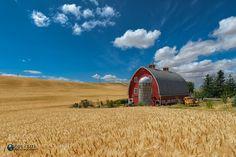 On The Farm by robetzel. Please Like http://fb.me/go4photos and Follow @go4fotos Thank You. :-)