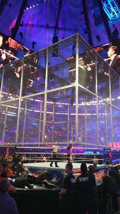 The cell is being lowered. It's time for Undertaker VS Shane McMahon!