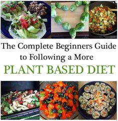 The Complete Beginners Guide to Following a More Plant Based Diet