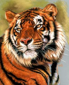 Tiger Painting - Power And Grace by Barbara Keith