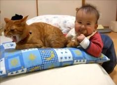 Yeow! That kid just bit my tail.