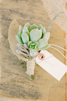 Succulent Boutonnieres | On Style Me Pretty: http://www.StyleMePretty.com/2013/01/30/temecula-california-wedding-from-stacey-ramsey-photography/ Stacey Ramsey Photography
