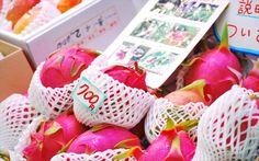 沖縄本島 市場のドラゴンフルーツ   不思議なかたちと食感、とても果汁があるジューシーな甘味♪