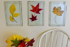Stack of Vintage Glass Panes from old windows.... Repurposed into hanging art by 'sandwiching' items between - could use leaves (like this) or vintage photos, postcards, doilies......