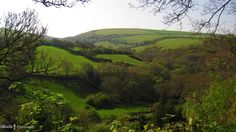 View from the lane to Newmills near Boscastle, Cornwall