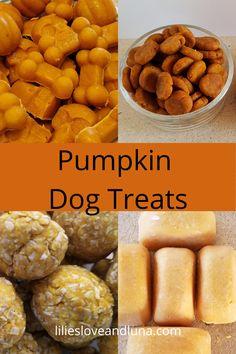 18 pumpkin dog treat recipes including no-bake, baked, and peanut butter free dog treats. Healthy Pumpkin, Baked Pumpkin, Pumpkin Spice, Pumpkin Dog Treats, Homemade Dog Treats, Easy Treats To Make, Sweet Potatoe Bites, Frozen Pumpkin, Peanut Butter Dog Treats