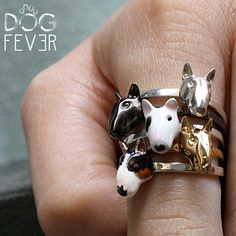 The whole #dogfevermilano #bullterrier fine rings family