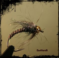 A bead head caddis pupa pattern I found on flyrecipies.com