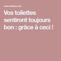 Vos toilettes sentiront toujours bon : grâce à ceci !