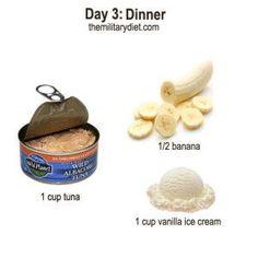Day 3: Dinner, Military Diet Plan