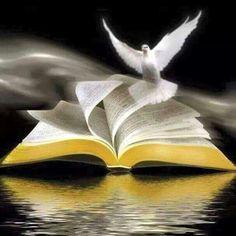 Spirit Of Truth, Holy Spirit, Bible Verses Quotes, Bible Scriptures, Open Bible, Jesus Christus, Saint Esprit, Bible Pictures, Prophetic Art
